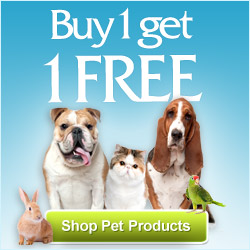 Buy Your Quality Pet Products from Puritan&#8217;s Pride. Check Offer Now!